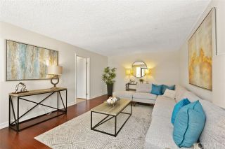 Photo 6: SOLANA BEACH Condo for sale : 2 bedrooms : 884 S Sierra Avenue
