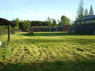 Photo 10: 26167 64 Avenue in Langley: County Line Glen Valley House for sale : MLS®# R2181114