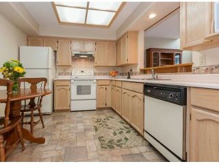 Photo 8: 1305 21937 48 Avenue in Orangewood: Murrayville Home for sale ()  : MLS®# F1404673