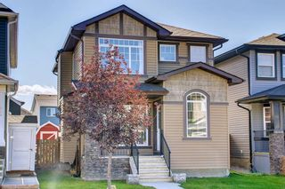 Photo 49: 180 Evanspark Gardens NW in Calgary: Evanston Detached for sale : MLS®# A1144783