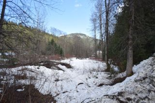 Photo 3: Lots 9&10 2ND AVENUE in Ymir: Vacant Land for sale : MLS®# 2453913