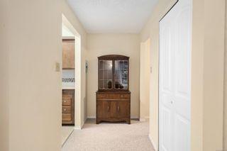 Photo 25: 4353 Northridge Cres in : SW Northridge House for sale (Saanich West)  : MLS®# 856532
