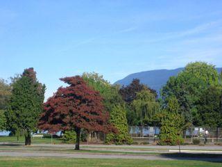 Photo 11: 2160 Cornwall Avenue in Vancouver: Kitsilano Condo for sale (Vancouver West)