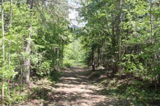Photo 11: 1445 WEST CRESTON ROAD in Creston: Vacant Land for sale : MLS®# 2458956