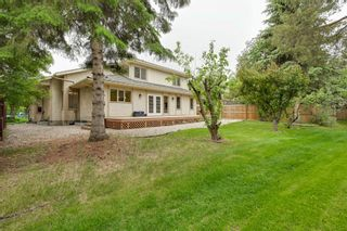 Photo 8: 17428 53 Ave NW: Edmonton House for sale : MLS®# E4248273