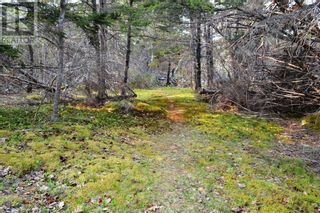 Photo 14: Old Kettle Road in Port Medway: Vacant Land for sale : MLS®# 202113253