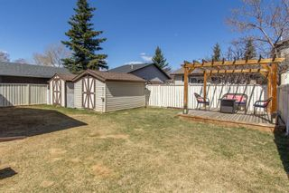 Photo 27: 421 Big Springs Drive SE: Airdrie Detached for sale : MLS®# A1099783