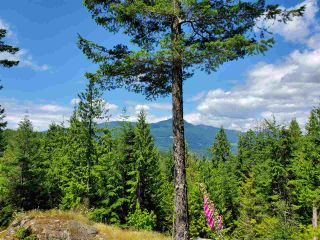 "Photo 1: Lot 49 FLINT Road: Keats Island Land for sale in ""10 Acres"" (Sunshine Coast)  : MLS®# R2460996"
