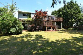 Photo 7: 2035 Bolt Ave in : CV Comox (Town of) House for sale (Comox Valley)  : MLS®# 881583