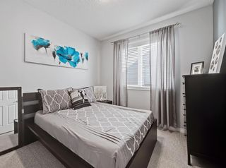 Photo 19: 148 Copperfield Common SE in Calgary: Copperfield Detached for sale : MLS®# A1079800