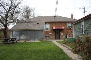 Photo 11: 233 Falstaff Avenue in Toronto: Maple Leaf House (Bungalow) for lease (Toronto W04)  : MLS®# W4304074