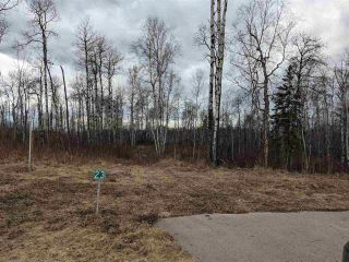 Photo 6: 23 53524 RGE RD 275: Rural Parkland County Rural Land/Vacant Lot for sale : MLS®# E4228042