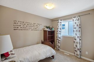 Photo 19: 12 Skyview Springs Crescent NE in Calgary: Skyview Ranch Detached for sale : MLS®# A1067284