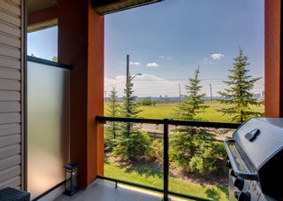 Photo 17: 239 2727 28 Avenue SE in Calgary: Dover Apartment for sale : MLS®# A1125792