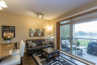 """Photo 11: 316 8328 207A Street in Langley: Willoughby Heights Condo for sale in """"Yorkson Creek Park"""" : MLS®# R2150359"""