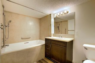 Photo 21: 1331 Kings Heights Road SE: Airdrie Detached for sale : MLS®# A1103852