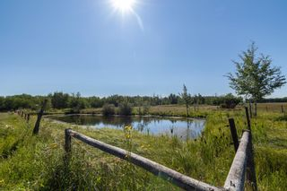 Photo 5: 49266 RGE RD 274: Rural Leduc County House for sale : MLS®# E4258454