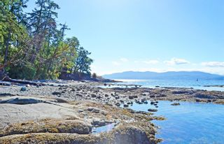 Photo 50: 845 Clayton Rd in : NS Deep Cove House for sale (North Saanich)  : MLS®# 877341