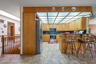 Photo 19: 9924 184 Street in Edmonton: Zone 20 House for sale : MLS®# E4247371