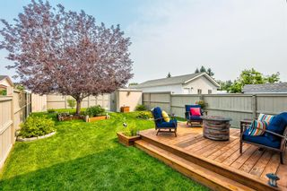 Photo 42: 173 Martinglen Way NE in Calgary: Martindale Detached for sale : MLS®# A1144697