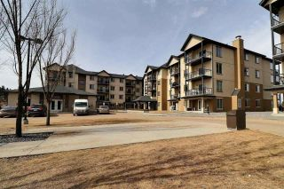 Photo 1: 205 10520 56 Avenue in Edmonton: Zone 15 Condo for sale : MLS®# E4236401