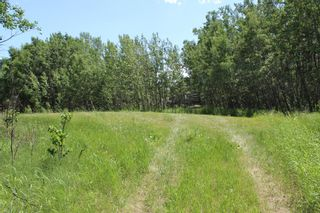 Photo 14: 25255 Bearspaw Place in Rural Rocky View County: Rural Rocky View MD Land for sale : MLS®# A1013795