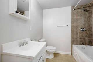 Photo 20: 4115 DOVERBROOK Road SE in Calgary: Dover Detached for sale : MLS®# C4295946