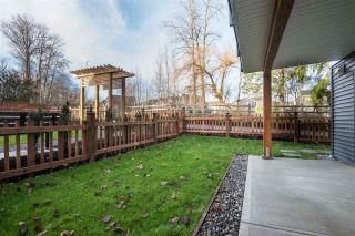 """Photo 17: 4 6479 192 Street in Surrey: Clayton Townhouse for sale in """"BROOKSIDE WALK"""" (Cloverdale)  : MLS®# R2333660"""