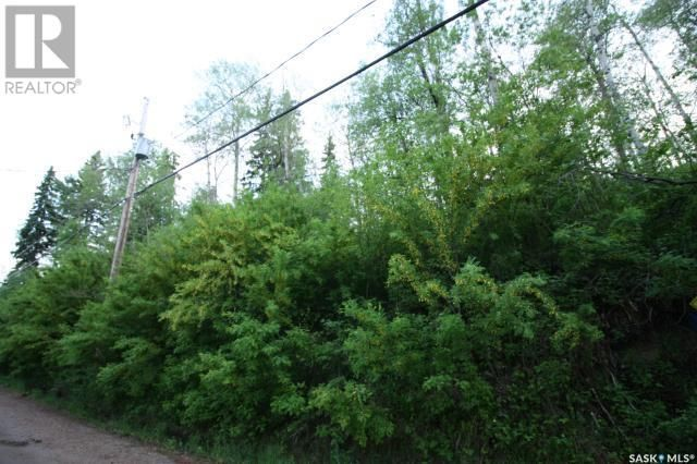 Main Photo: 156 Carwin Park DR in Emma Lake: Vacant Land for sale : MLS®# SK846952