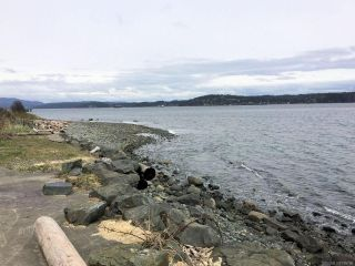 Photo 21: 391 Island Hwy in CAMPBELL RIVER: CR Campbell River Central Multi Family for sale (Campbell River)  : MLS®# 798796