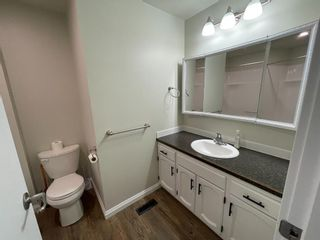 Photo 17: 5218 Silverpark Close: Olds Detached for sale : MLS®# A1115703