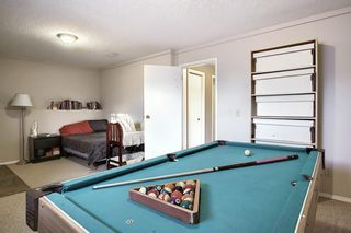 Photo 23: 163 Erin Meadow Green SE in Calgary: Erin Woods Detached for sale : MLS®# A1077161