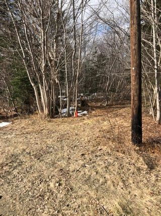 Photo 5: Lot Lighthouse Road in Bay View: 401-Digby County Vacant Land for sale (Annapolis Valley)  : MLS®# 202104918