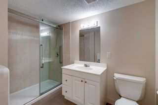 Photo 41: 131 Citadel Crest Green NW in Calgary: Citadel Detached for sale : MLS®# A1124177