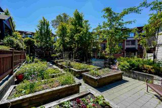 """Photo 22: 55 19478 65 Avenue in Surrey: Clayton Townhouse for sale in """"SUNSET GROVE"""" (Cloverdale)  : MLS®# R2587297"""