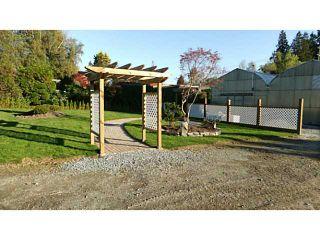 Photo 12: 24533 DEWDNEY TRUNK Road in Maple Ridge: Websters Corners House for sale : MLS®# V1033097