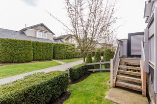 """Photo 44: 1 18828 69 Avenue in Surrey: Clayton Townhouse for sale in """"Starpoint"""" (Cloverdale)  : MLS®# R2255825"""