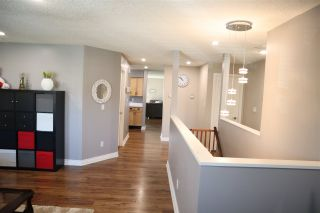 """Photo 5: 2268 WILLOUGHBY Way in Langley: Willoughby Heights House for sale in """"Langley Meadows"""" : MLS®# R2556788"""