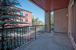 Photo 19: 201 315 24 Avenue SW in Calgary: Mission Apartment for sale : MLS®# A1062504