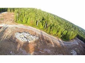 "Main Photo: 12230 267 Street in Maple Ridge: Northeast Land for sale in ""MCFADDEN CREEK ESTATES"" : MLS®# R2166047"