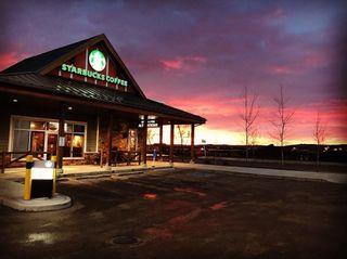 Photo 45: 90 SILVERADO SKIES Crescent SW in Calgary: Silverado Detached for sale : MLS®# A1021309
