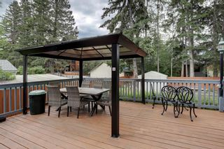 Photo 48: 338 Squirrel Street: Banff Detached for sale : MLS®# A1139166