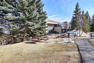 Photo 31: 6 210 Village Terrace SW in Calgary: Patterson Apartment for sale : MLS®# A1080449