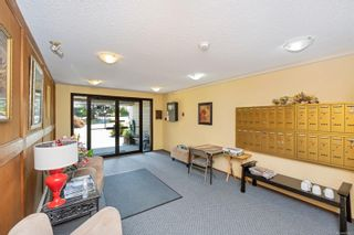 Photo 23: 215 10110 Fifth St in : Si Sidney North-East Condo for sale (Sidney)  : MLS®# 880325