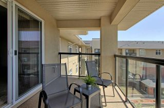 Photo 14: 7909 71 ST NW in Edmonton: Zone 17 Condo for sale