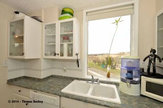 Photo 15: 602 145 Point Drive NW in CALGARY: Point McKay Condo for sale (Calgary)  : MLS®# C3612958