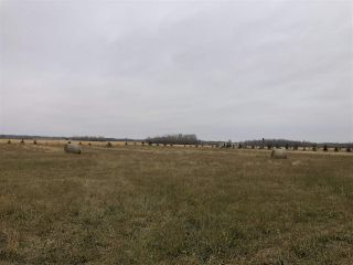Photo 5: Twp Rd 583 Rge Rd 271: Rural Westlock County Rural Land/Vacant Lot for sale : MLS®# E4218422