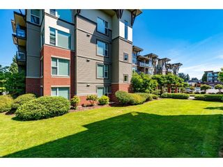 Photo 4: 308 33538 MARSHALL Road in Abbotsford: Abbotsford East Condo for sale : MLS®# R2593643