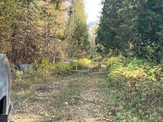 Photo 3: DL3592 & DL4084 1020 Forest Service Road in Seymour Arm: syemour arm Land Only for sale (shuswap)  : MLS®# 10241424