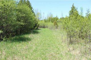 Photo 8: Pt Lt 1 Concession 13 Road in Brock: Rural Brock Property for sale : MLS®# N3143558